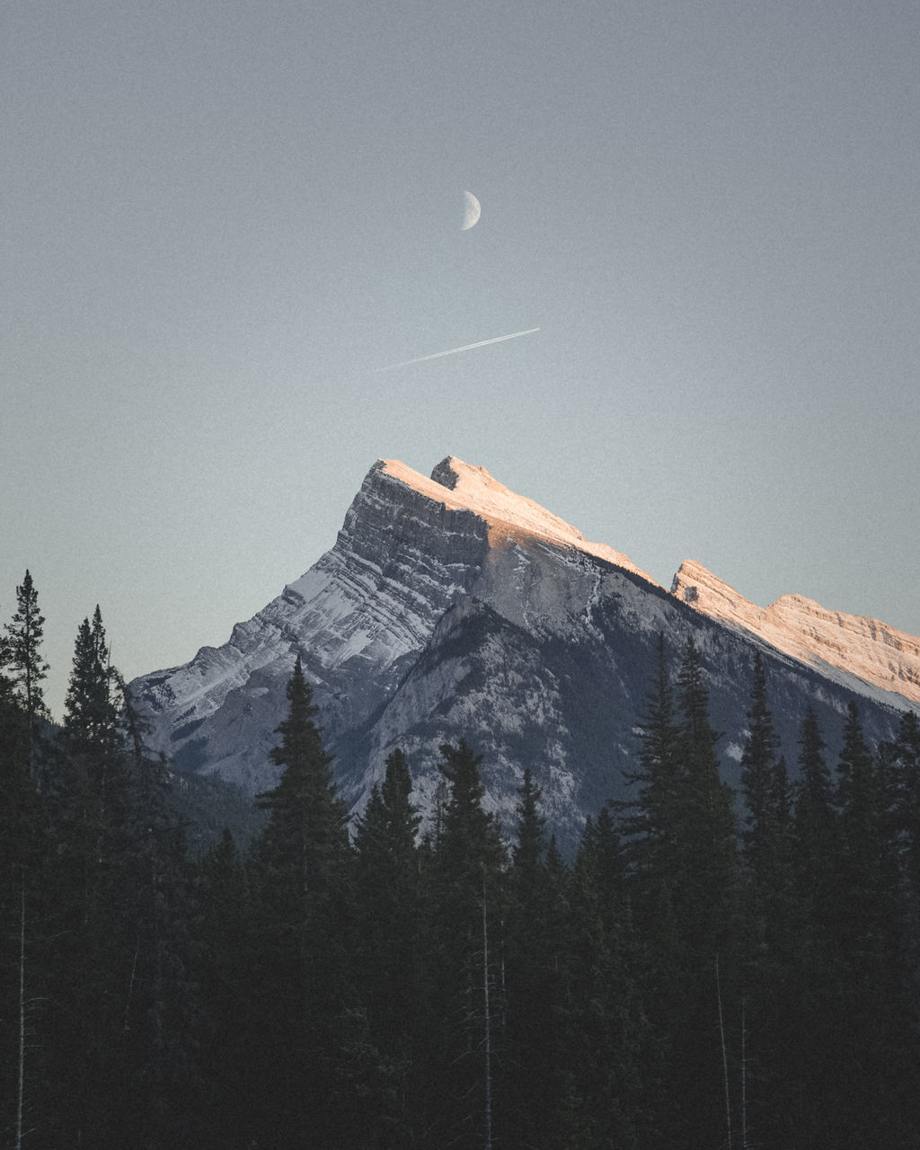 "First Light over the Heart of the Canadian Rockies. EyeEm Best Shots EyeEm Nature Lover If Trees Could Speak astronomy beauty in Nature canada canon canonphotography Clear sky first light Moon mountain mountain range Nature outdoors scenics snow ""If Trees Could Speak"""