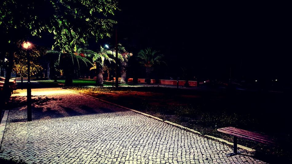 Colors Perspective Garden City Street Samsung Galaxy S6 Galaxys6 Portugal Photography Smartphone Godsnotdead Wood Lights Lowlight Goodcompany Night Nature Dark Contrast