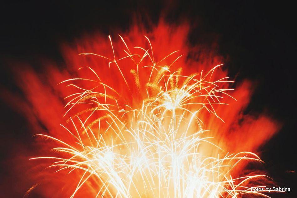 Pyrogames2014 Jahrhunderthalle   Bochum Fireworks Long Exposure Feuerwerk Raketen Langzeitbelichtung