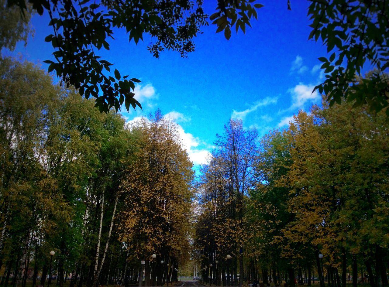 Octoberrrrr🍂🍁🍂 осень парк 1октября юбилейный парк Ярославль Beautiful Nature