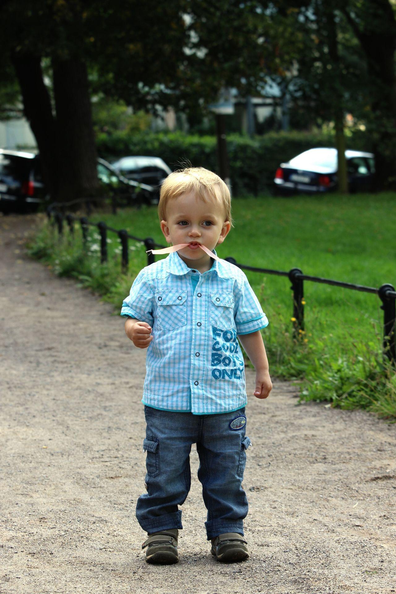 Beautiful stock photos of boy, Blond Hair, Boys, Casual Clothing, Caucasian Ethnicity