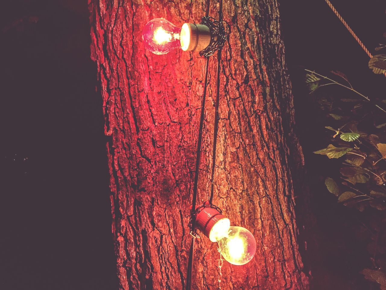 Art Photography Backgrounds No People TreePorn Light Red Color Artphotography Rote Lampe ArtWork Red Light Red Lights Red Colorful Night Photography Bulbs Bulb Bulbphotography