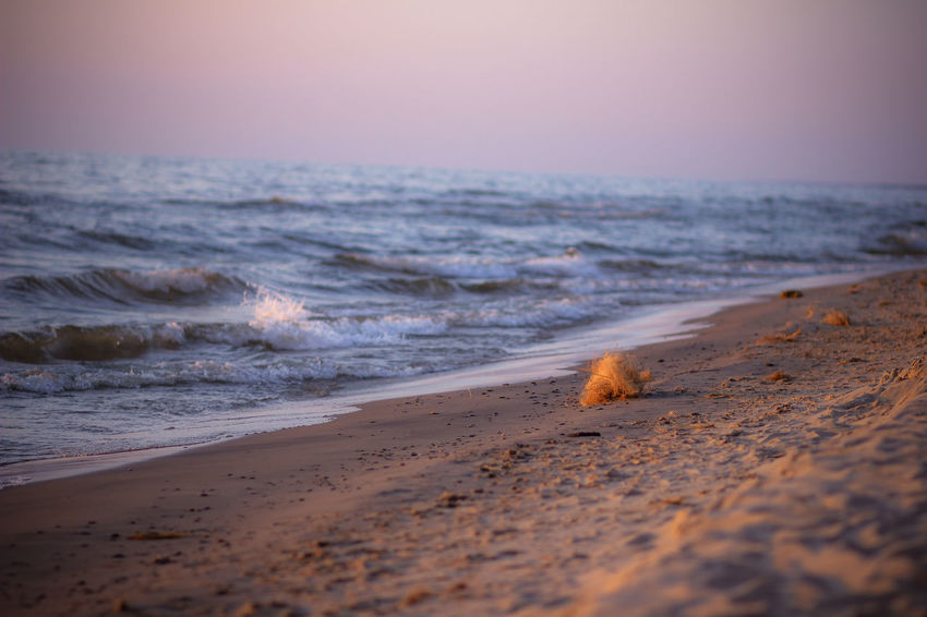 Beach Beauty In Nature Coastal Feature Coastline Day Horizon Horizon Over Water Michigan Motion Nature No People Outdoors Sand Scenics Sea Sky Summer Sunset Surf Tide Tranquil Scene Travel Destinations Vacations Water Wave