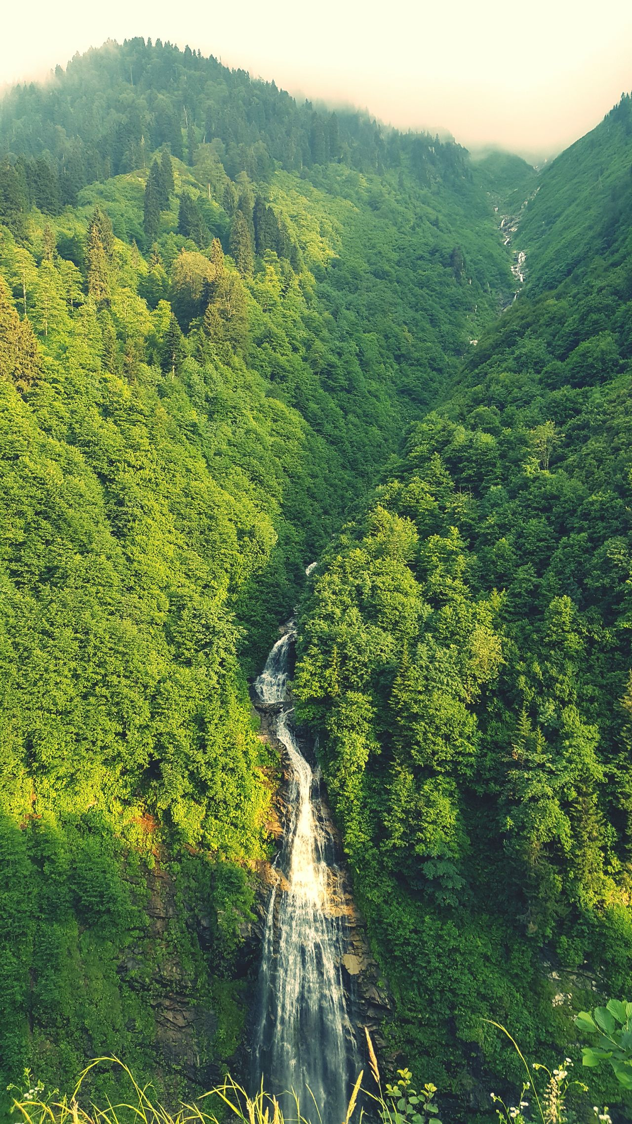 Rize/Turkey Gelintülüşelalesi EyeEm Best Shots EyeEm Best Shots - Nature Hidden Gems  My Best Photo 2015