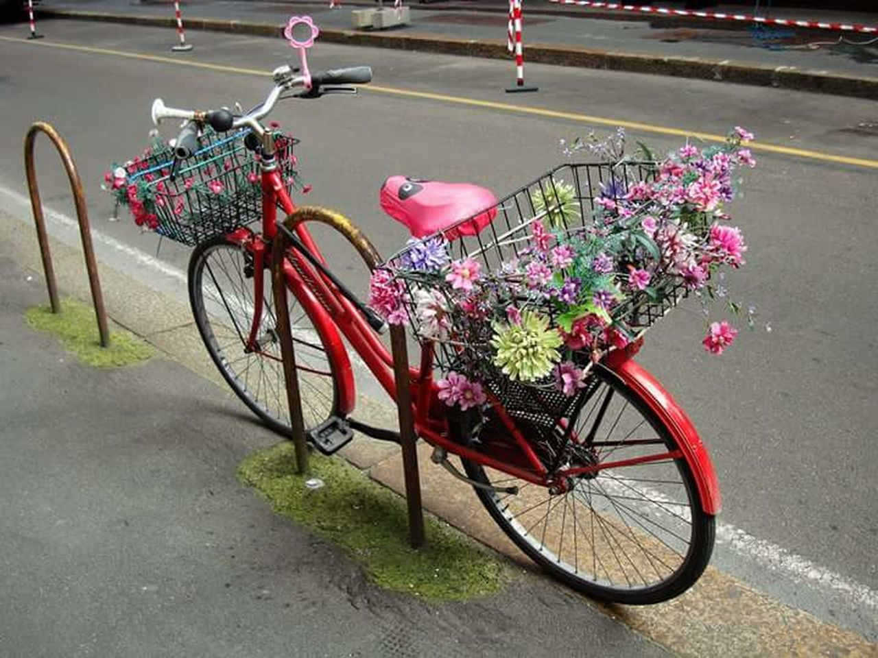 bicycle, transportation, mode of transport, land vehicle, flower, stationary, outdoors, day, no people, road, red, city, bicycle rack, nature