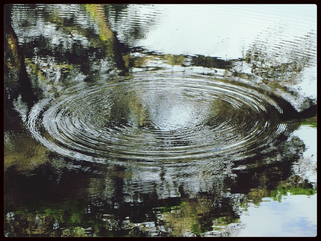 The Power of the mini waves in the lake... the perfect circle... :-) I LOVE PHOTOGRAPHY Take Photos Taking Photos Trying Something New