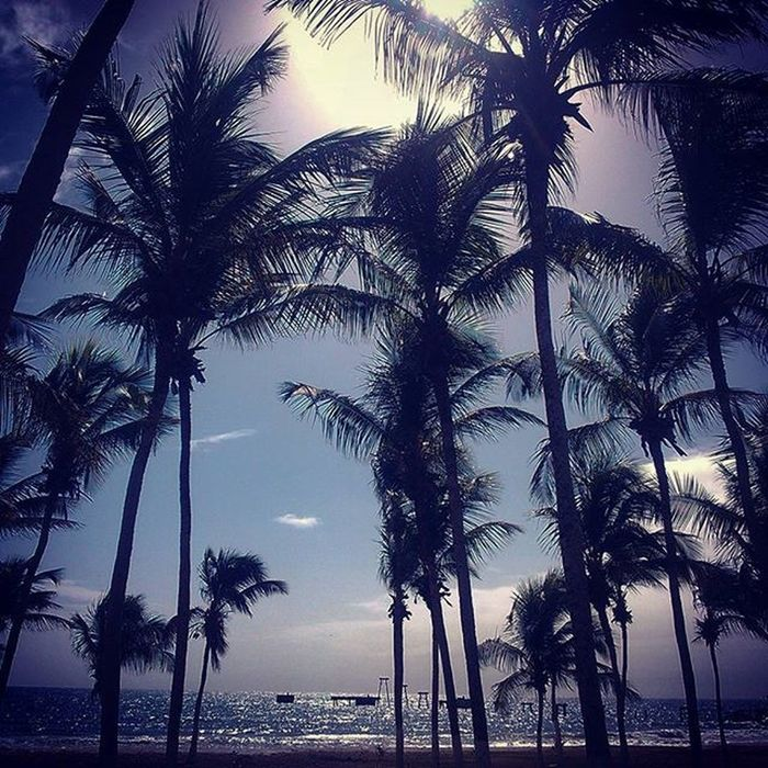 Beach Beachlife Beachlifestyle Paraíso Relax Photoislife Margarita