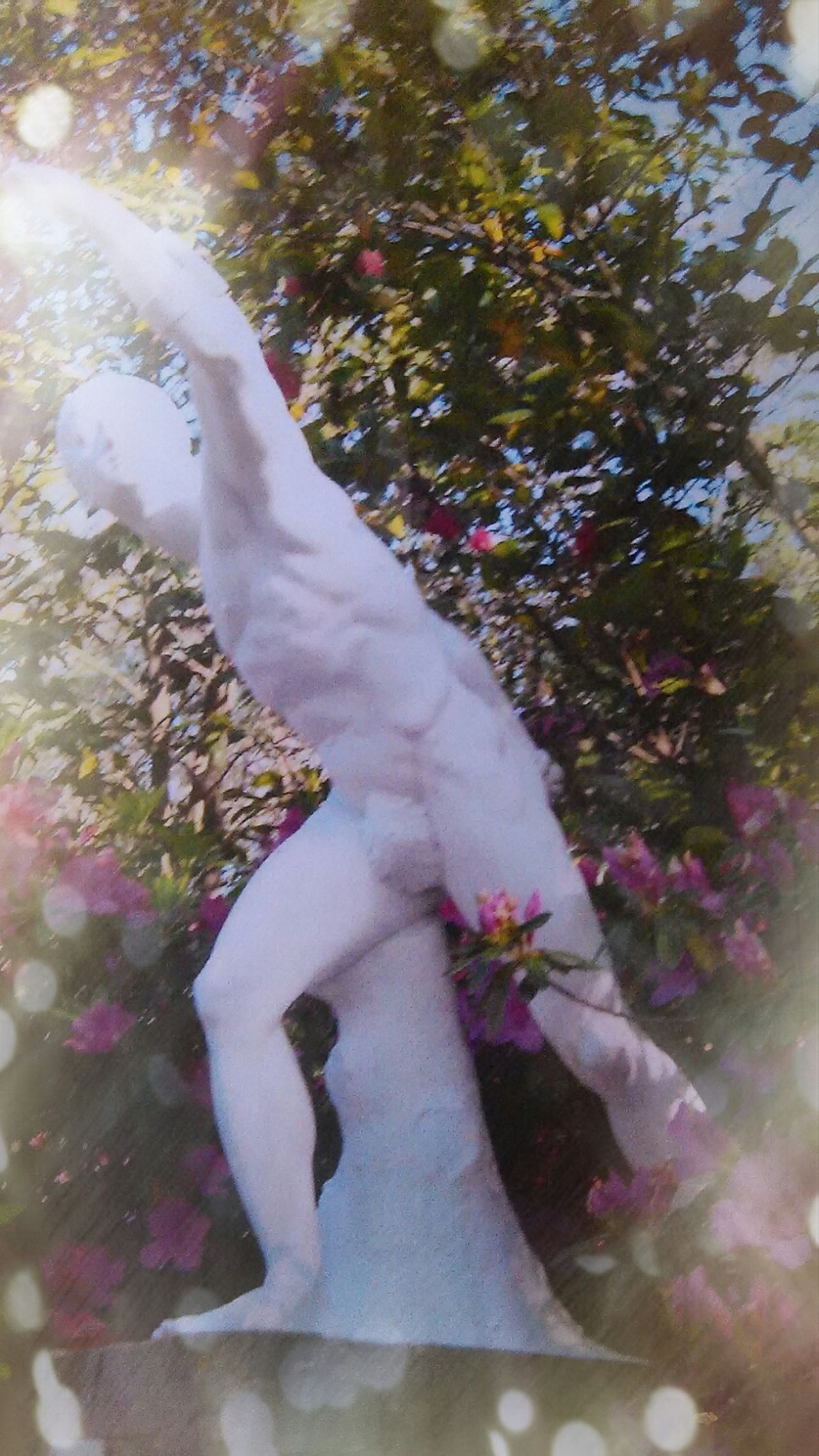 Wetumpka Alabama Jasmine Hill Gardens Javalin Thrower Stone Statue Enjoying Life Azelia Gardens