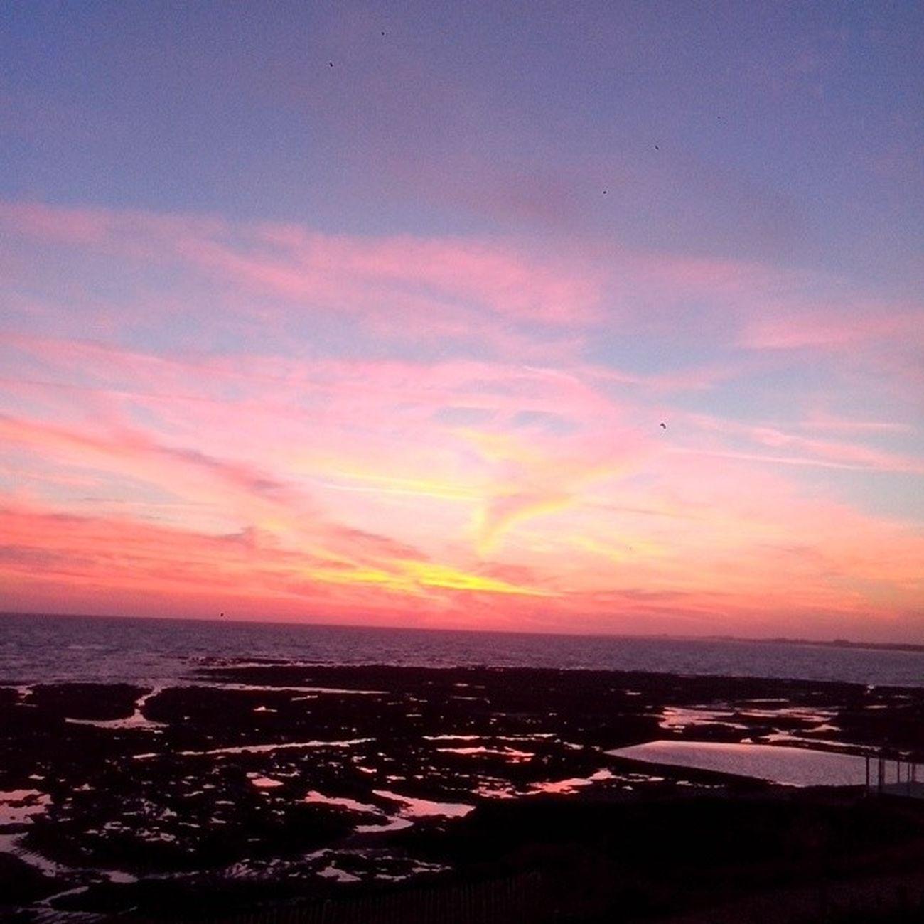 Sun is down. Coucher  De Soleil Vue magnifique vacances bleue rose mer sea sun summer beautiful