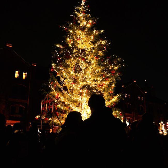Christmas Around The World Christmas Lights EyeEm Best Shots Japan Silhouette Christmas Tree Creative Light And Shadow Lights Night Lights Couple Watching Warm Eyeemphotography Open Edit Winter