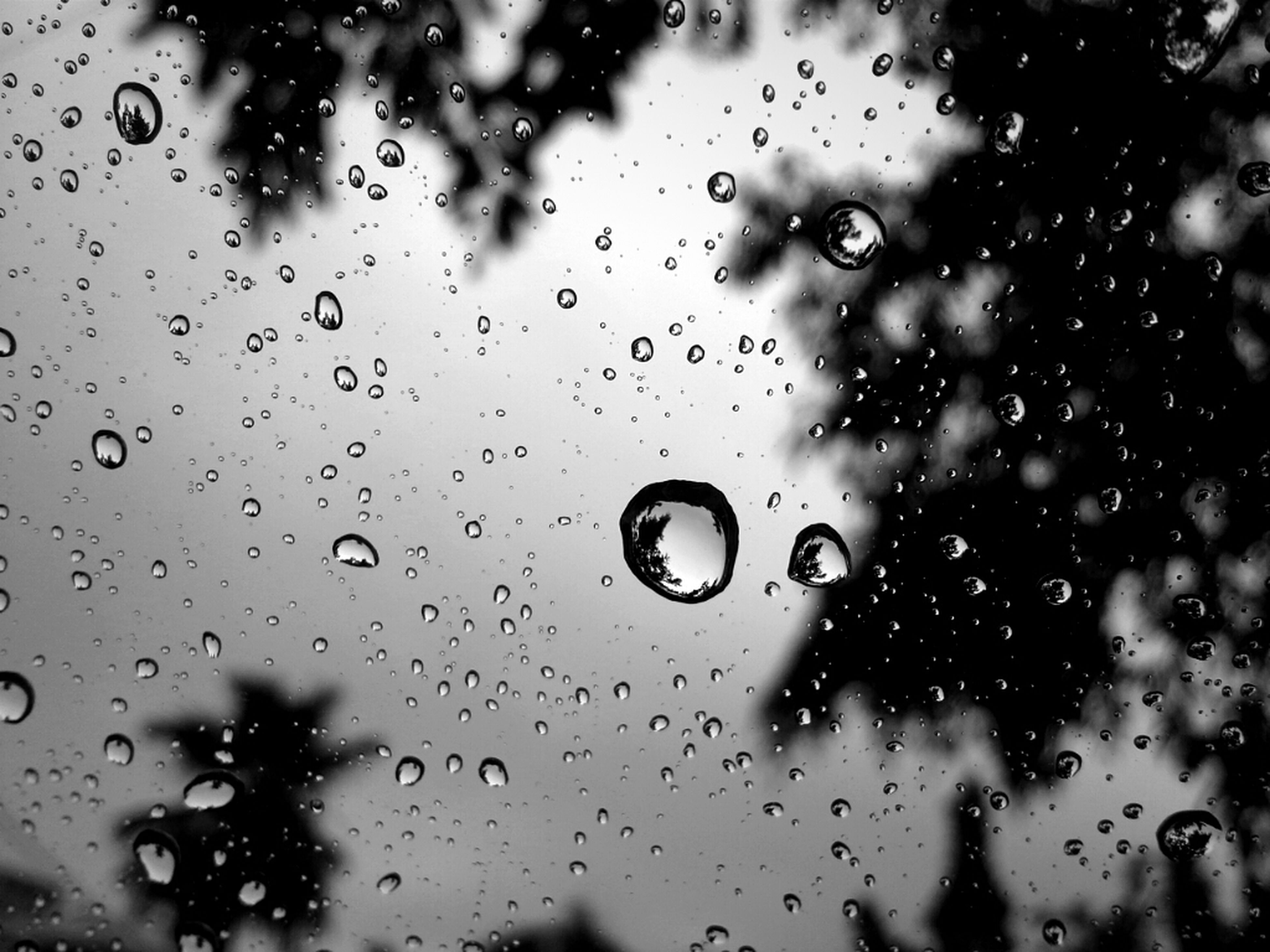 drop, wet, rain, water, window, raindrop, transparent, focus on foreground, weather, glass - material, indoors, full frame, backgrounds, water drop, close-up, droplet, season, glass, sky, monsoon