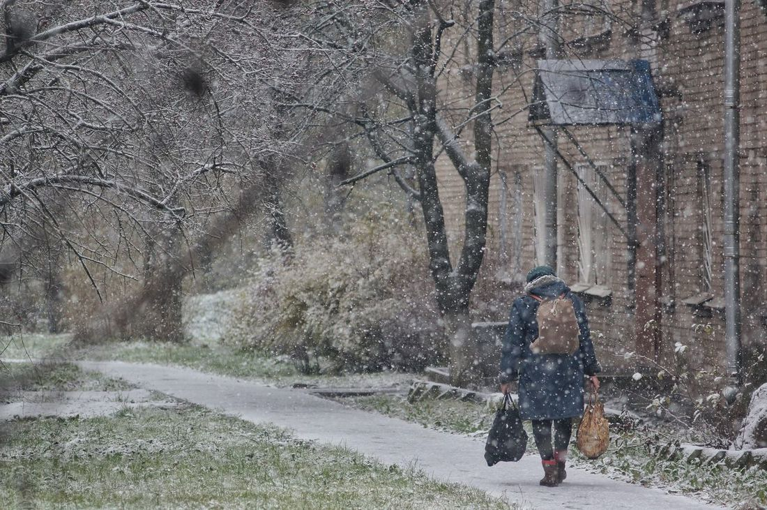 10/25/16 — Babushka (old lady) struggles the first snow today in St. Petersburg Snow Winter Snowing One Person Oldman Babushka Saint Petersburg бабушка первый снег Real People Walking Outdoors Lifestyles Women People Adult Old Woman Old Lady First Snow The First Snow Autumn Snow In October Russia