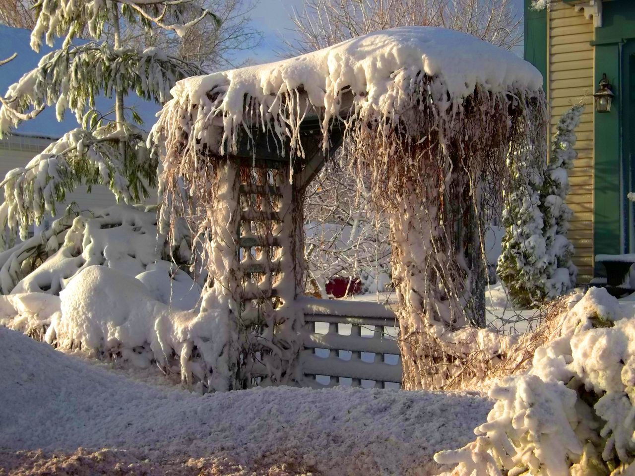 The arbor trellis after the big snow storm After The Storm Arbor Beauty In Nature Cold Temperature Day Heavy Snow On Trees Heavy Snowfall Magical Landscape Nature No People Outdoors Scenics Snow Snow Covered Snow Covered Garden Snow Storm Snowcapped Trellis Winter Winter Winter Garden Winter Storm Winter Wonderland Winter Wonderland ❄ Winter Wonders
