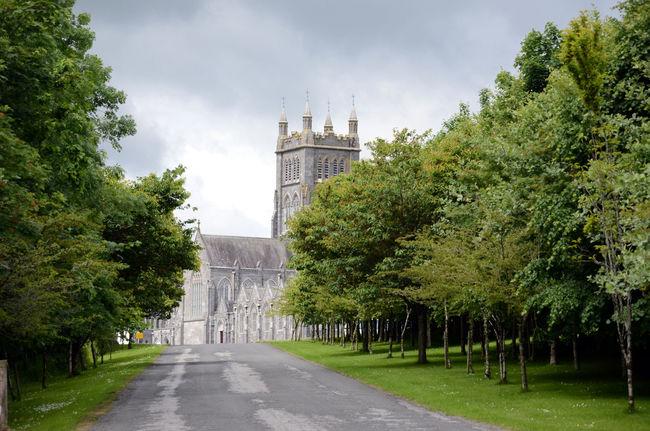 Abbey Avenue Cistercian Mount Melleray Trappist Tree-lined