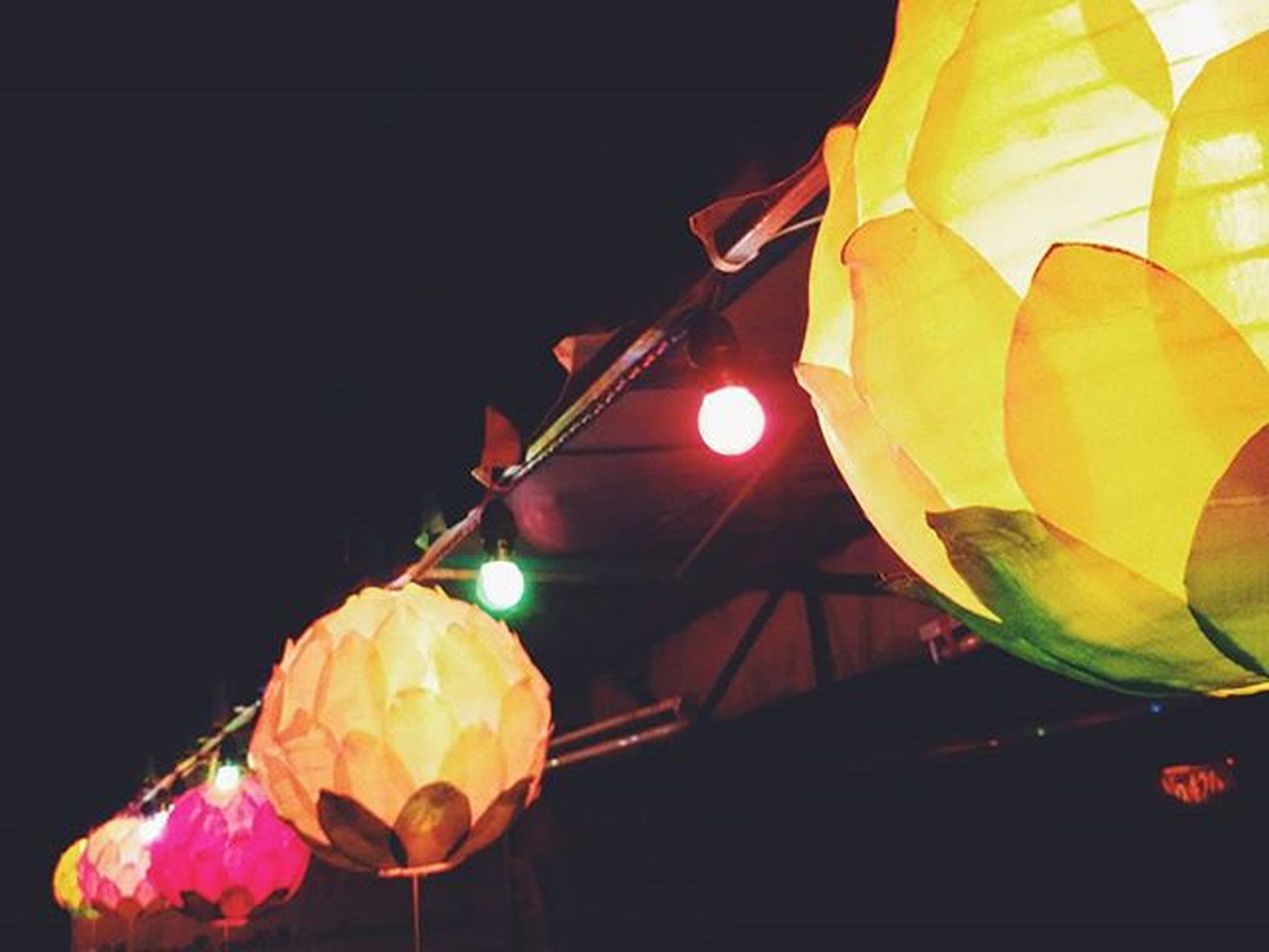yellow, illuminated, lantern, night, decoration, lighting equipment, hanging, indoors, close-up, low angle view, multi colored, leaf, no people, built structure, orange color, pattern, flower, cultures, electricity