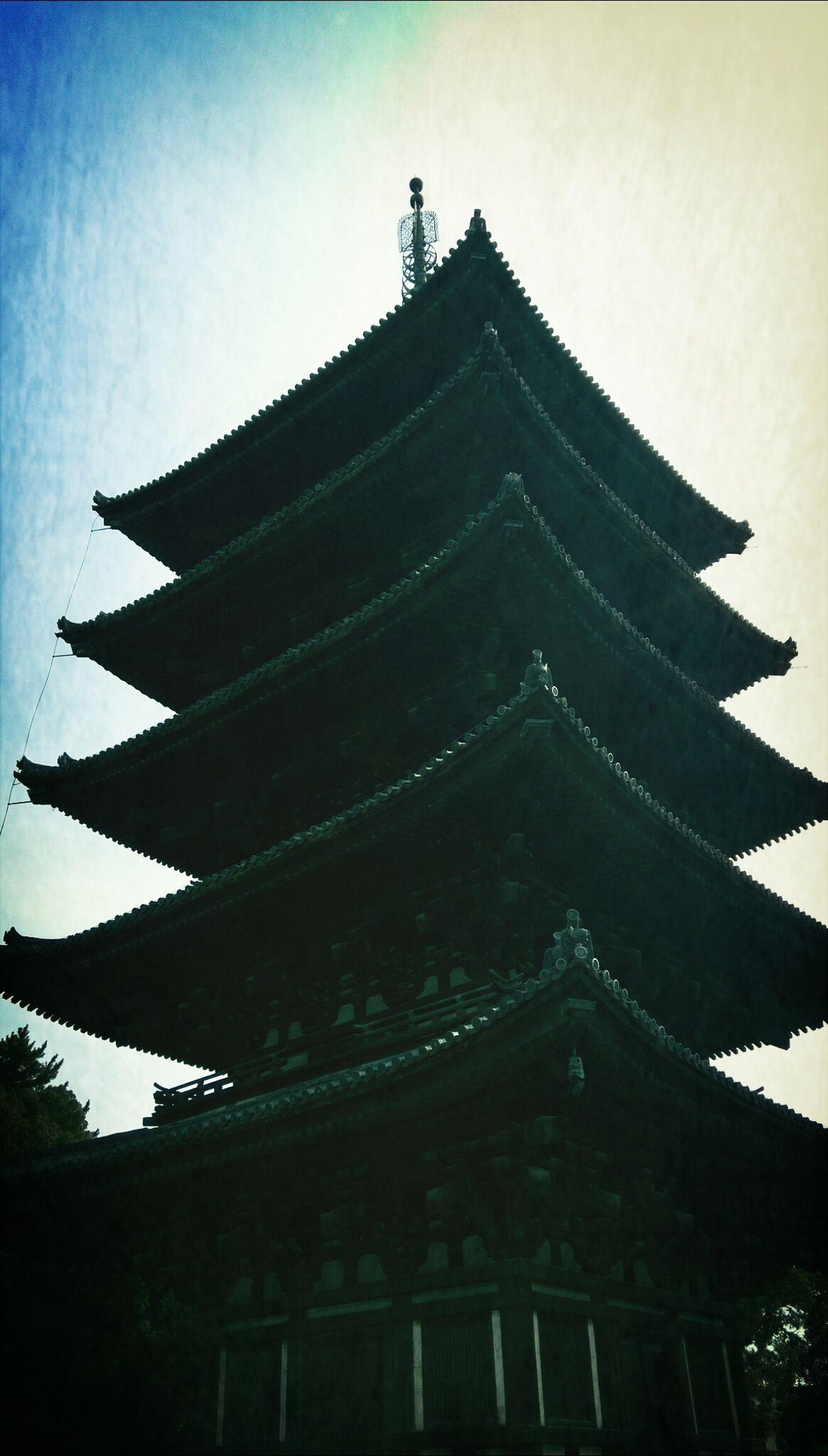 みこっちの鹿見たいリクエストに応えて奈良観光~♪ Taking Photos