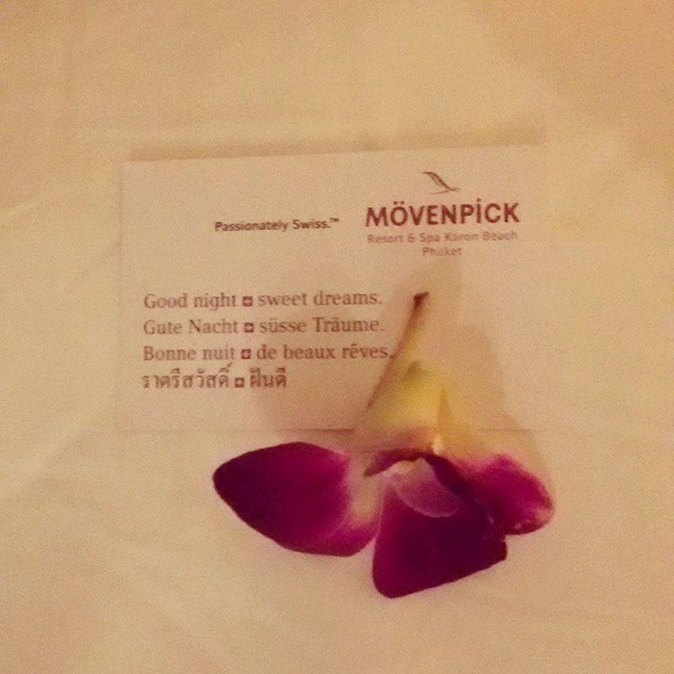 Good night🌙🌒каждый вечер возвращаясь в номер на подушке нас ждет записка от отеля с пожеланием спокойной ночиMövenpick тайланд пораспать
