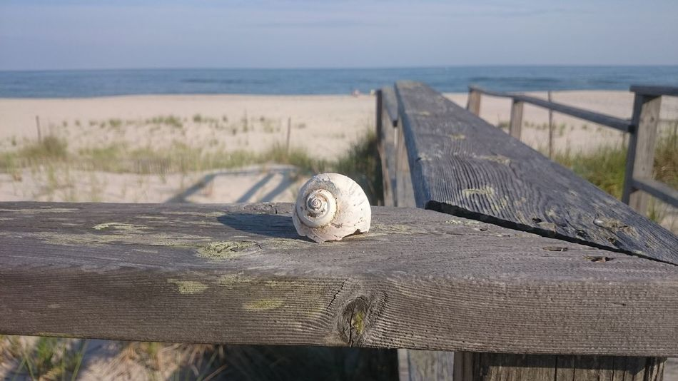 Sea Water Horizon Over Water Beach Railing Tranquility Shore Tranquil Scene Ocean Outdoors No People Summer Scenics Seashells Seashells/dried Corals Seashells, Sand And Water Seashells, Rocks, Sand Seashell Vacations Tranquility Sand Relaxation Focus On Foreground Beachphotography Beaches