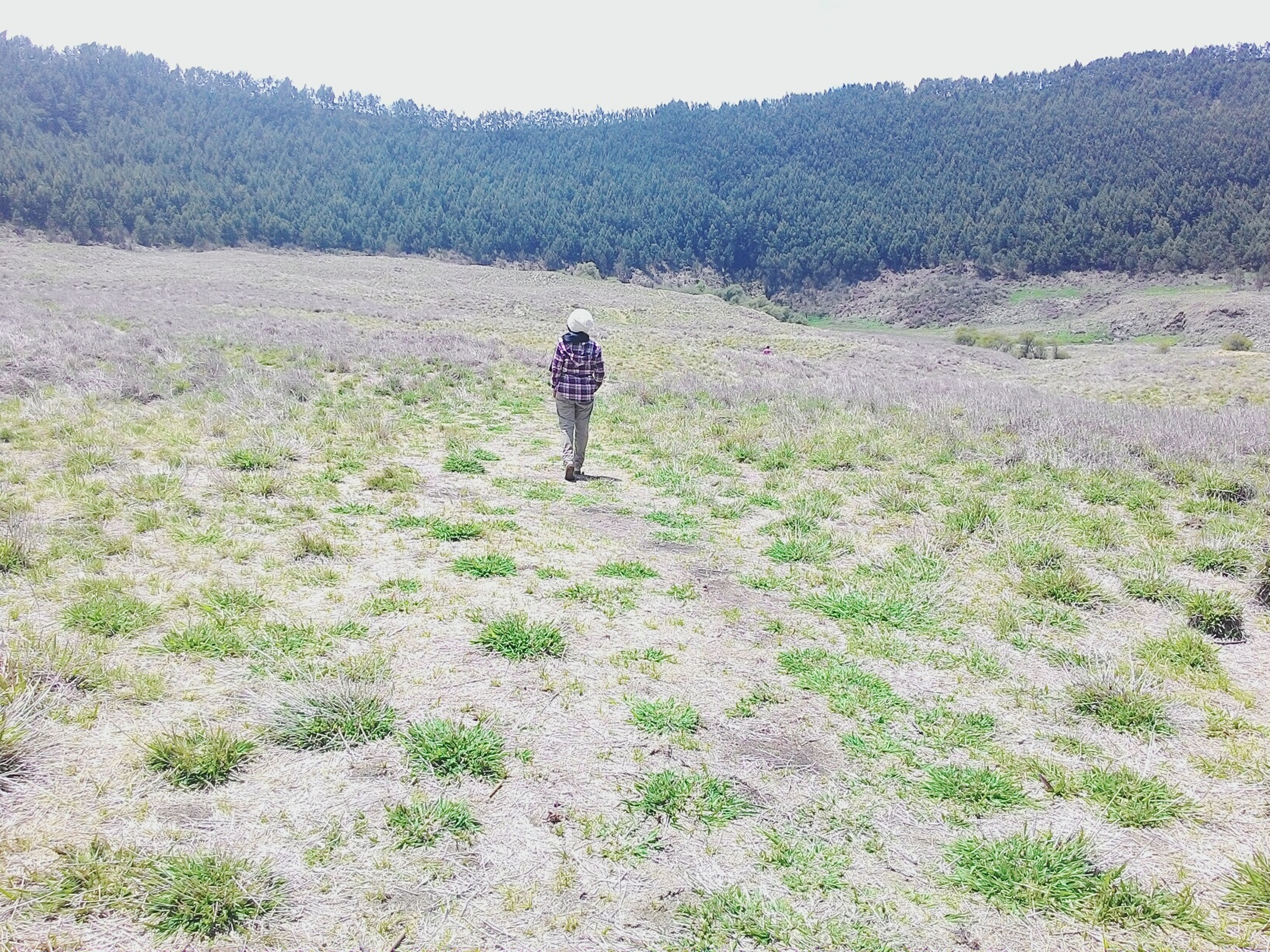 mountain, landscape, lifestyles, full length, leisure activity, rear view, tranquility, tranquil scene, nature, standing, beauty in nature, men, field, scenics, walking, grass, plant, hiking