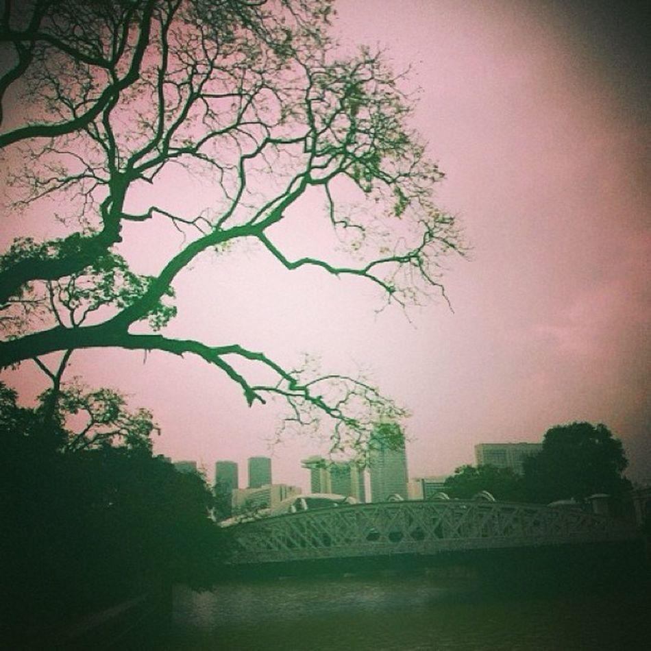 ฟุ้ง Singapore