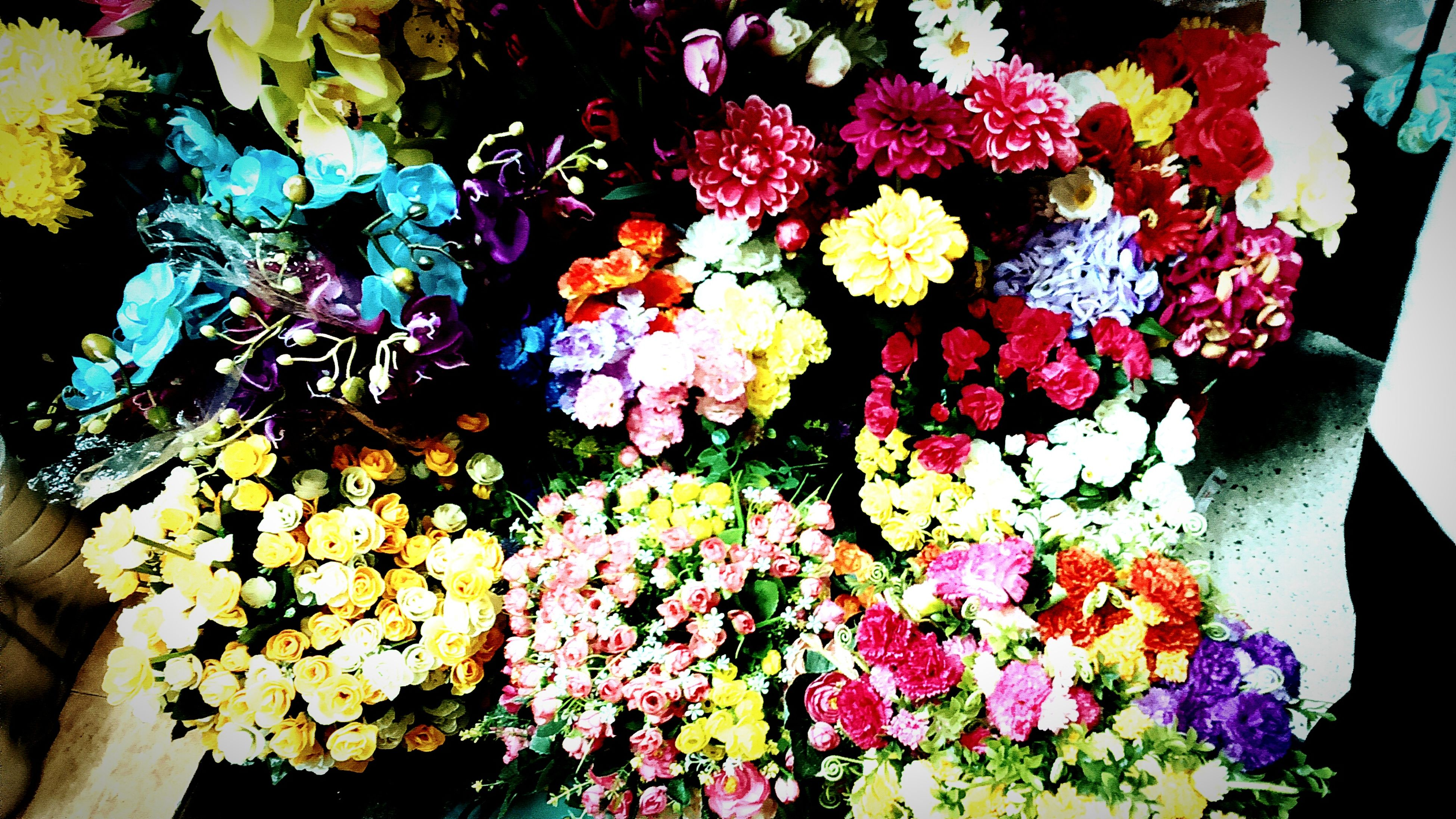 flower, petal, freshness, fragility, multi colored, growth, beauty in nature, plant, flower head, indoors, high angle view, nature, blooming, leaf, bouquet, in bloom, potted plant, close-up, bunch of flowers, blossom