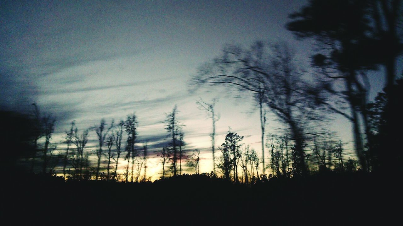 The life never stops moving, even for the beautiful things in life Silhouette Tree Landscape Sunset No People Beauty In Nature Nature Driving Backroads