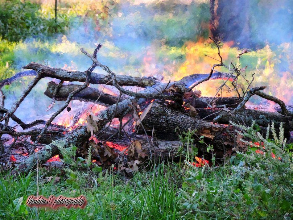Fire Burning Wood Ibrahim S Photography