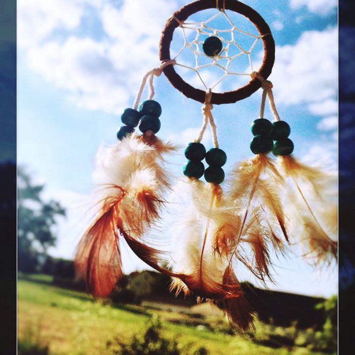 Follow your dreams 💎 Dreamcatcher Sky Day No People Growth Nature Close-up Low Angle View Outdoors Hanging Focus On Foreground Feather  Beauty In Nature Tree