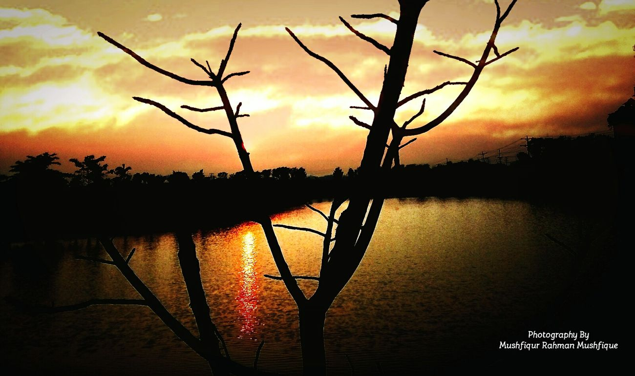 Sunset Water Lake Reflection Nature Silhouette Tree Orange Color Sky Cloud - Sky Dramatic Sky Beauty In Nature Sun Landscape Outdoors No People Scenics Branch Extreme Weather EyeEmNewHere EyeEm Beauty EyeEm Masterclass Awesome Nature EyeEm Nature Lover Adapted To The City
