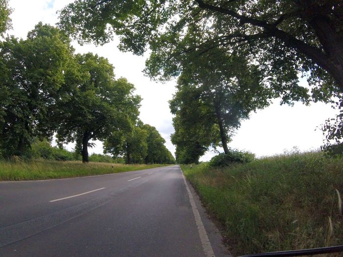 Streetphotography Street Photography Street Landstrasse Straße Straßenfotografie Bäume Gopro Gopro Session