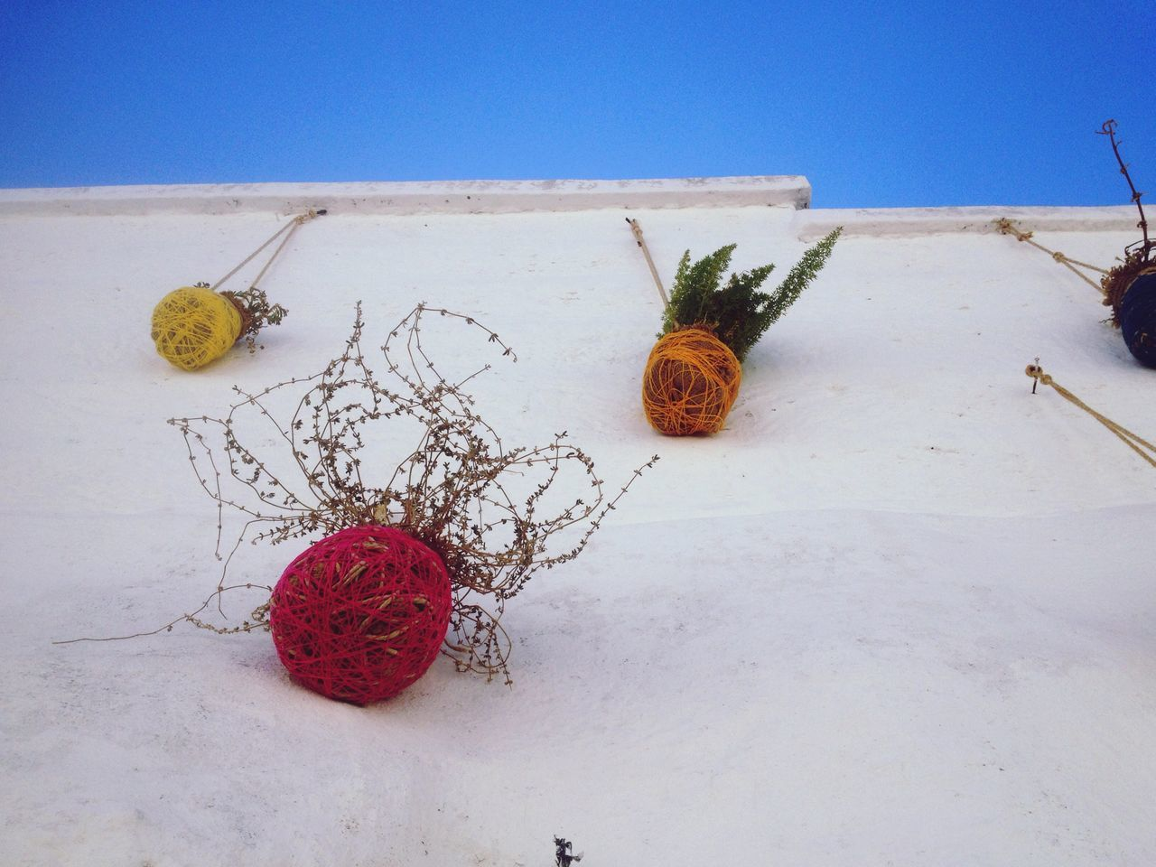 No People Day Outdoors Close-up Wall Sky Blue Blue Sky White White Wall Mediterranean  Pot Potted Plant Salento Italy