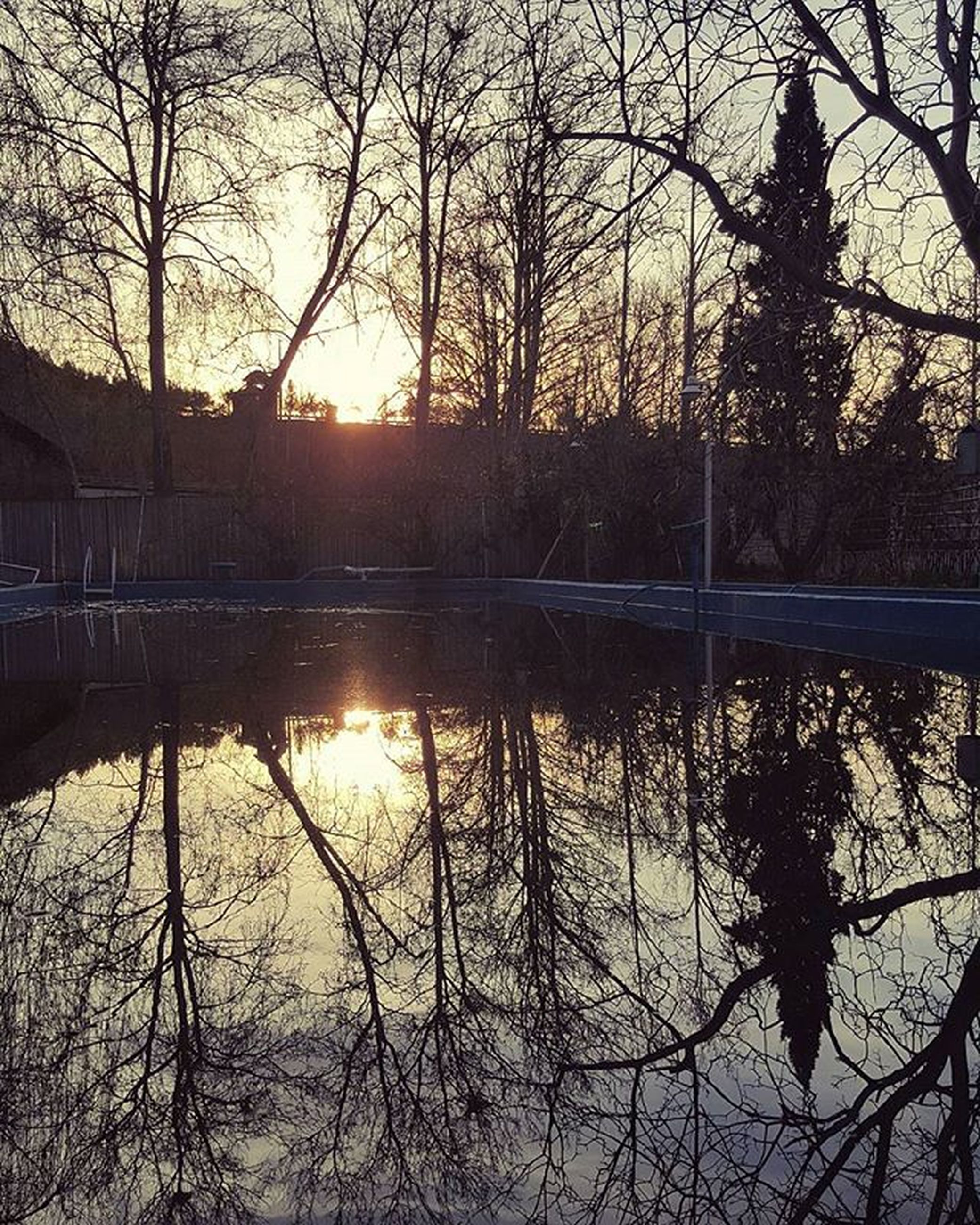 water, sunset, reflection, tree, sun, lake, silhouette, bare tree, branch, tranquility, tranquil scene, beauty in nature, scenics, nature, sunlight, river, sky, idyllic, orange color, outdoors