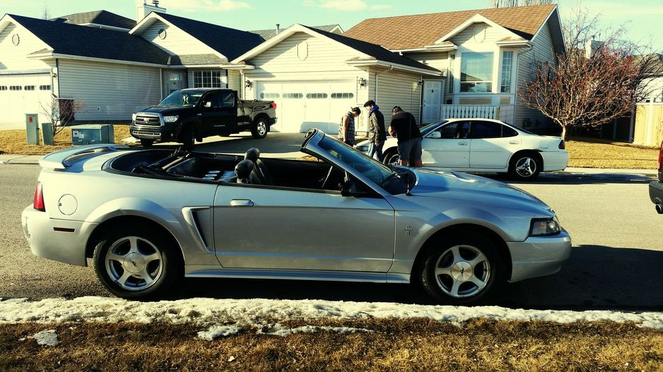 Good bye grand prix, hello mustang... cuz thats what we do Trading Cars Check This Out Hanging Out Enjoying Life Tunning Car Car Lovers All Original Cars Fully Loaded Street Cars New Whip Calgary, Alberta Nice Ride Somewhere In Canada Badass