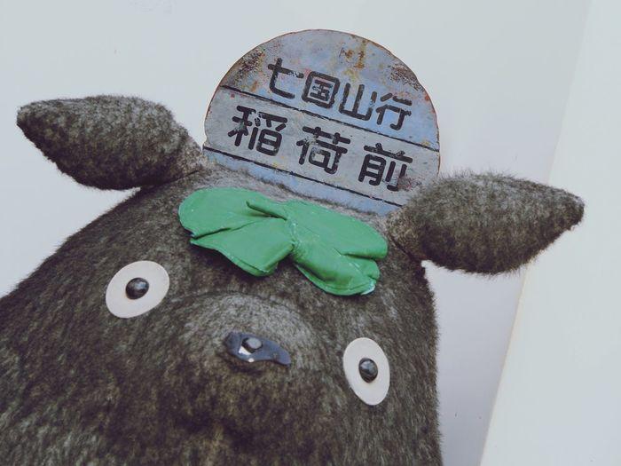 となりのトトロ Myneighbourtotoro 福岡 Fukuoka 太宰府天満宮 Dazaifutenmangu どんぐりの森 ジブリ Ghibli Ghibli Movie ジブリ映画
