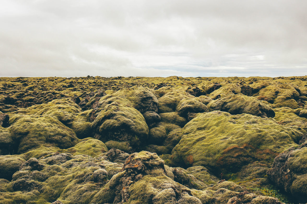 Beauty In Nature Crater Geology Green Iceland Laki Landscape Majestic Moss Nature Nature Nature Photography No People Non-urban Scene Outdoor Outdoors Outside Physical Geography Tranquil Scene Volcano The KIOMI Collection Pivotal Ideas