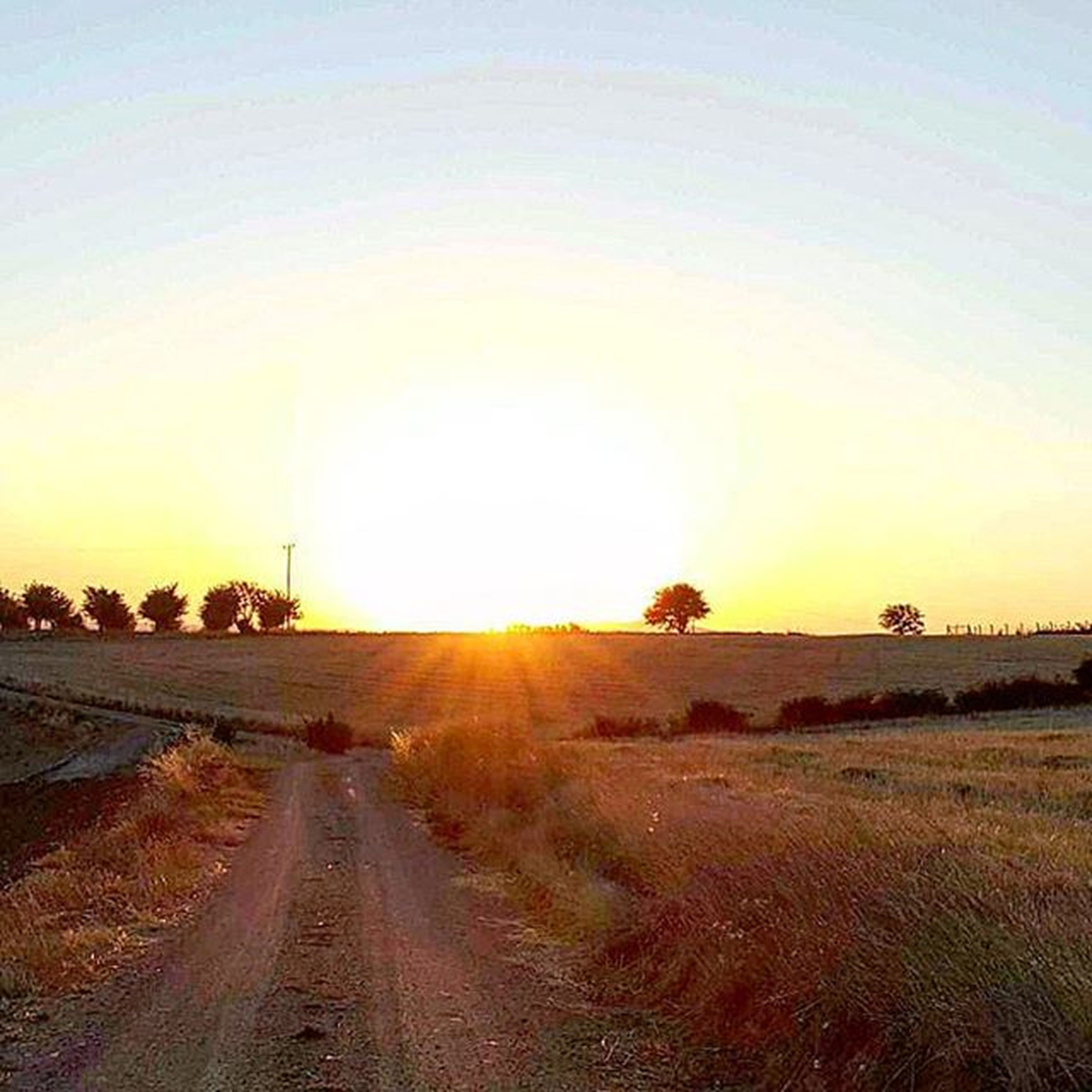 sun, sunset, the way forward, road, tranquil scene, tranquility, sunlight, diminishing perspective, scenics, transportation, vanishing point, clear sky, sunbeam, nature, beauty in nature, sky, landscape, water, dirt road, lens flare