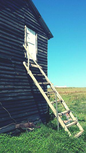 Ladder Uruguay Cabo Polonio
