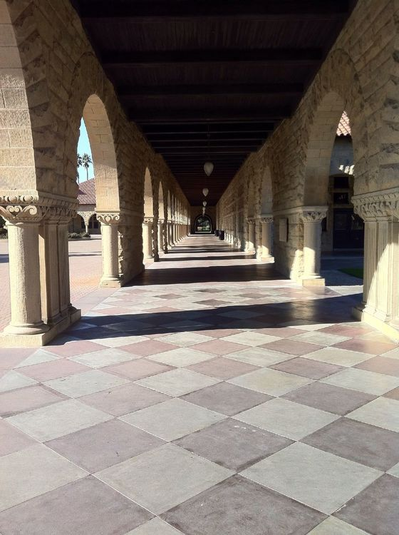 Architecture in Stanford by Jerry Packer
