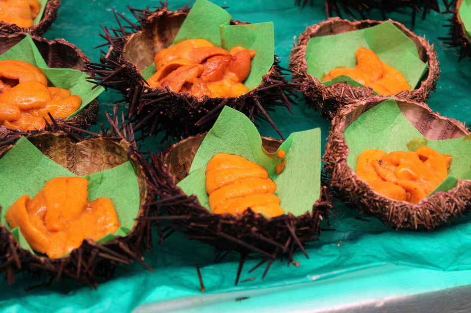 Fresh sea urchin on sale in the Kuromon Ichiba Market, Osaka, Japan Close-up Day Fresh Freshness Healthy Eating Indoors  Kuromon Ichiba Market No People Orange Color Osaka 大阪 Raw Ready-to-eat Sea Urchin Sea Urchin Sushi
