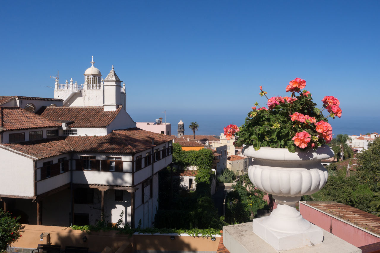 Architecture Atlantic Ocean Canary Islands Clear Sky Flower La Orotava No People Outdoors Sea SPAIN Tenerife Town View