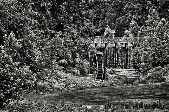 Walking over the waterfall and seeing the old waterwheel that no-longer runs but still as beautiful as it was years ago. Beauty In Nature Day Diminishing Perspective Empty Footpath Grass Green Color Growing Growth Hdrphotography Landscape Nature No People Old Waterwheel Outdoors Plant Rural Scene Scenics Sky The Way Forward Tranquil Scene Tranquility Tree Walkway Waterfall #water #landscape #nature #beautiful
