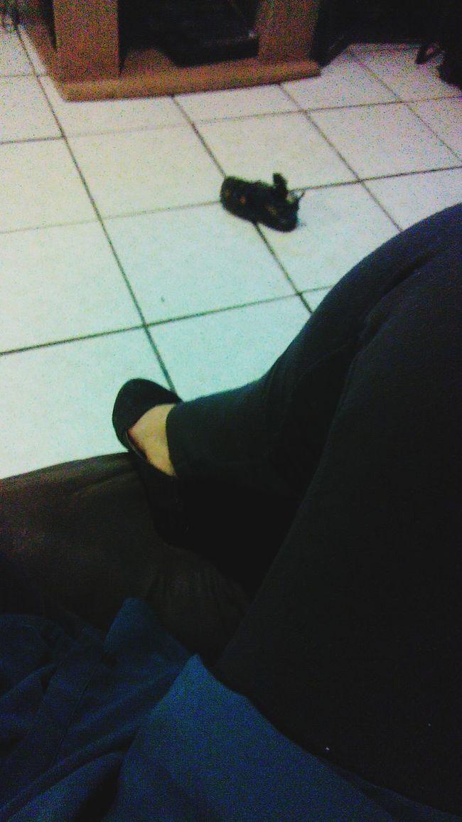 My Leggings :)