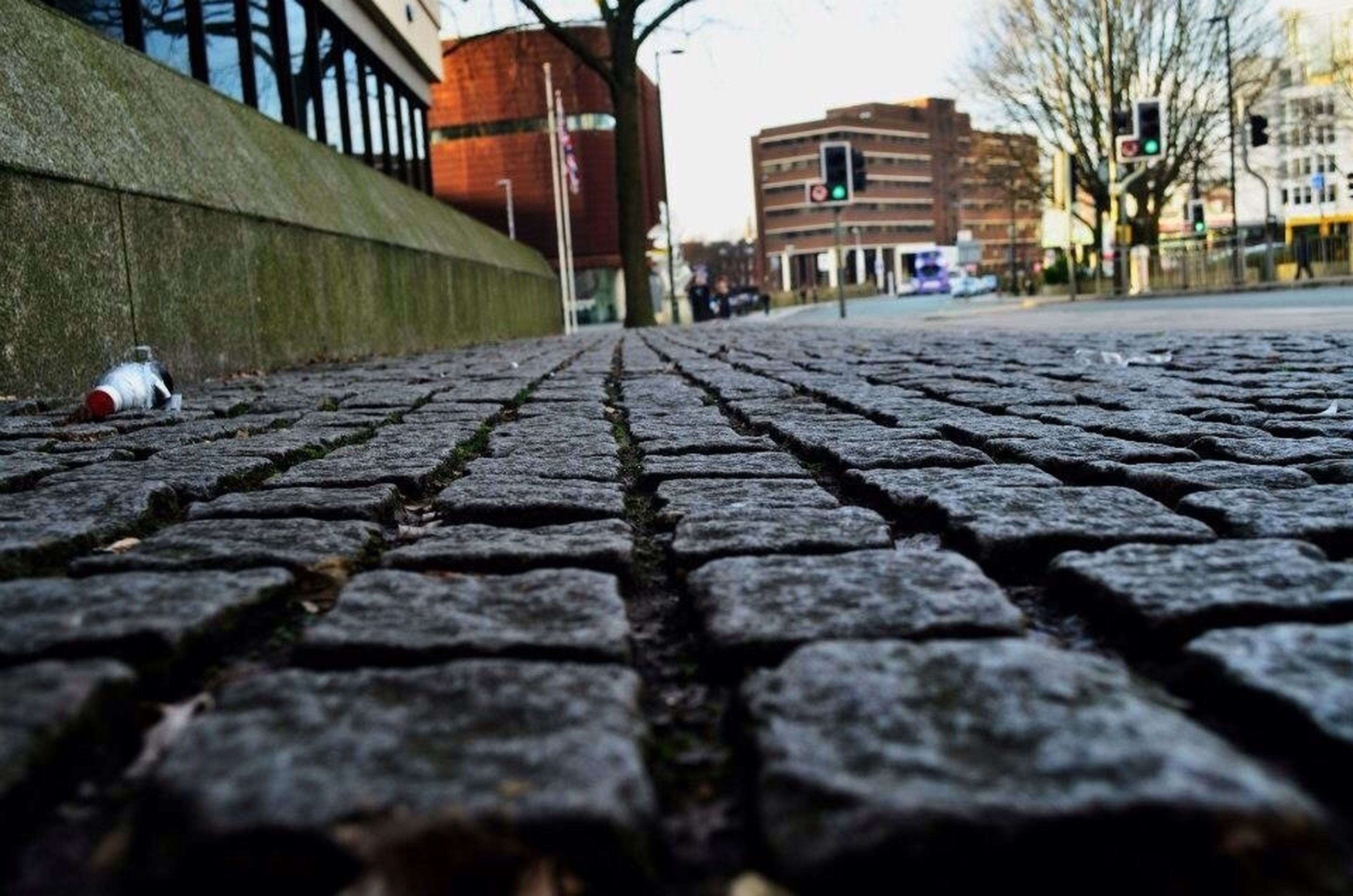 building exterior, architecture, built structure, the way forward, cobblestone, street, house, city, diminishing perspective, residential structure, bird, residential building, surface level, animal themes, walkway, walking, footpath, building, day, one animal