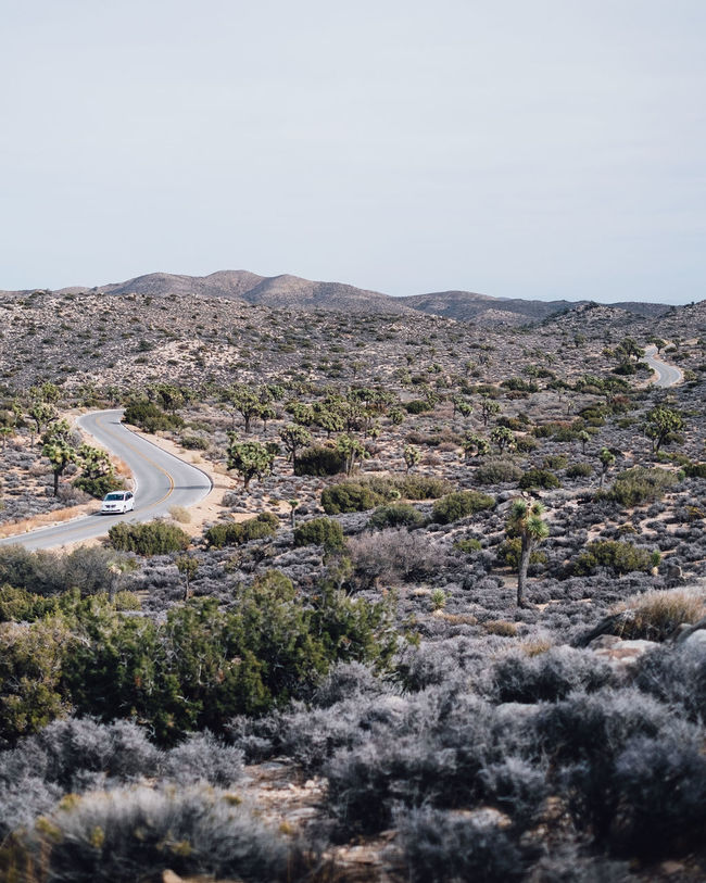 Keys View Joshua Tree National Park National Park The Great Outdoors - 2016 EyeEm Awards Adventure Desert Road Road Trip Original Experiences Outdoors Sunny Landscape Idyllic Vista Views Wanderlust Feel The Journey Adventure Club