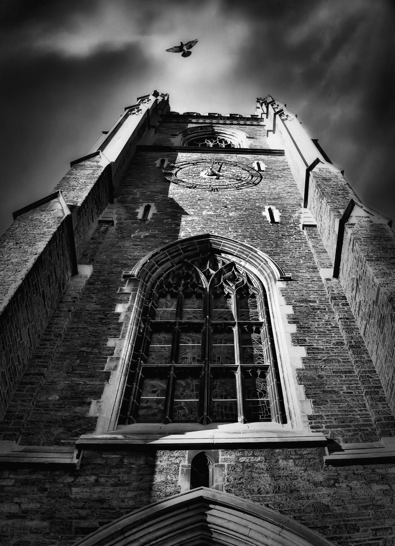 Looking up at U of T Architecture Lookingup Birds In Flight Classic Architecture Stained Glass Window Pigeon Blackandwhite Bw_collection Noir Et Blanc