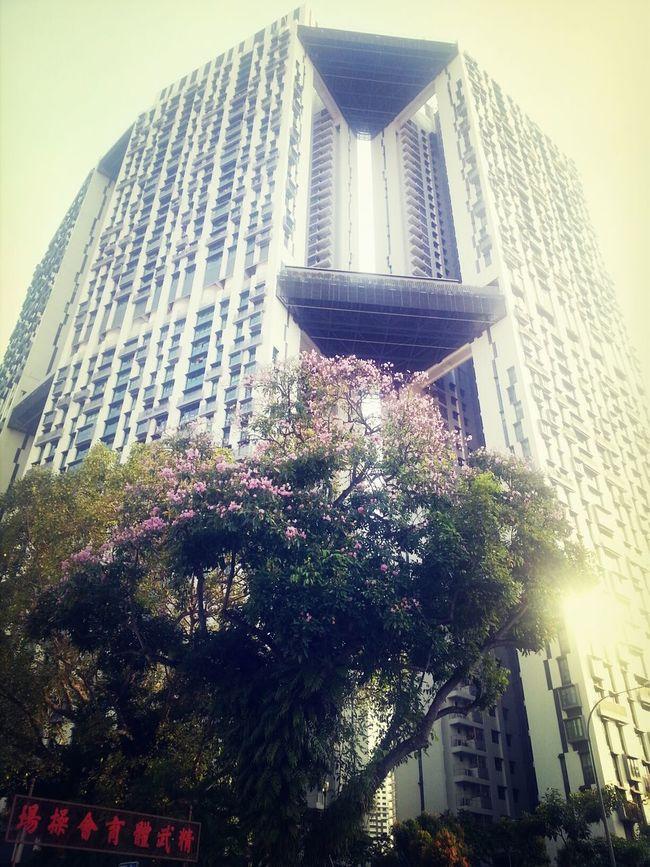 somewhere beautiful in Singapore