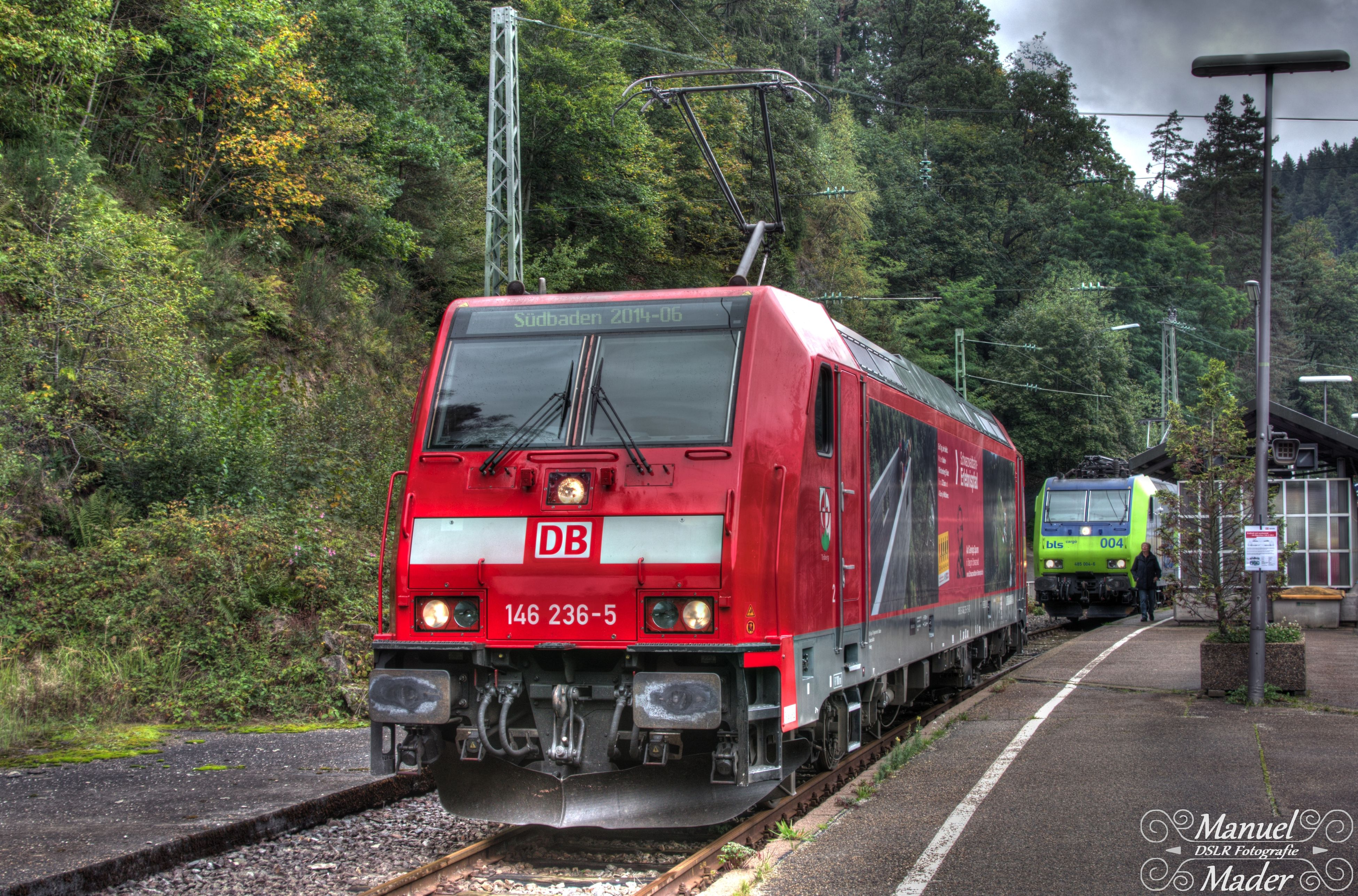 transportation, railroad track, red, tree, mode of transport, rail transportation, public transportation, land vehicle, train - vehicle, text, building exterior, communication, architecture, day, built structure, street, car, outdoors, road, no people