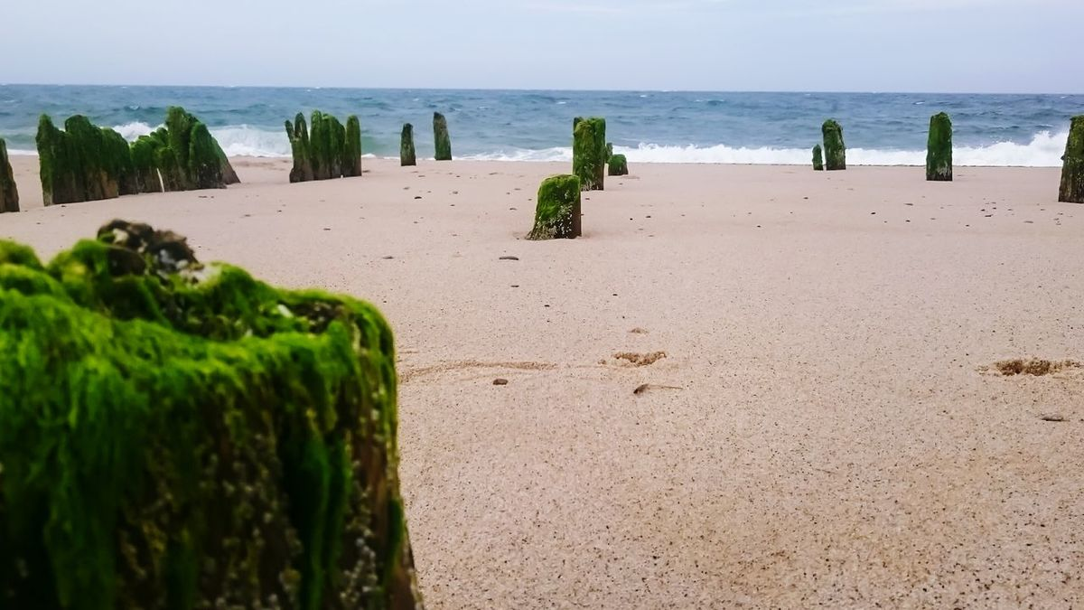 Ruins Architecture Ruin Wood Water Wave Ocean Beach Sand Nature Outdoors Travel Destinations Tranquility No People Patern New England  Beachphotography Beach Photography Sky And Clouds Ocean View