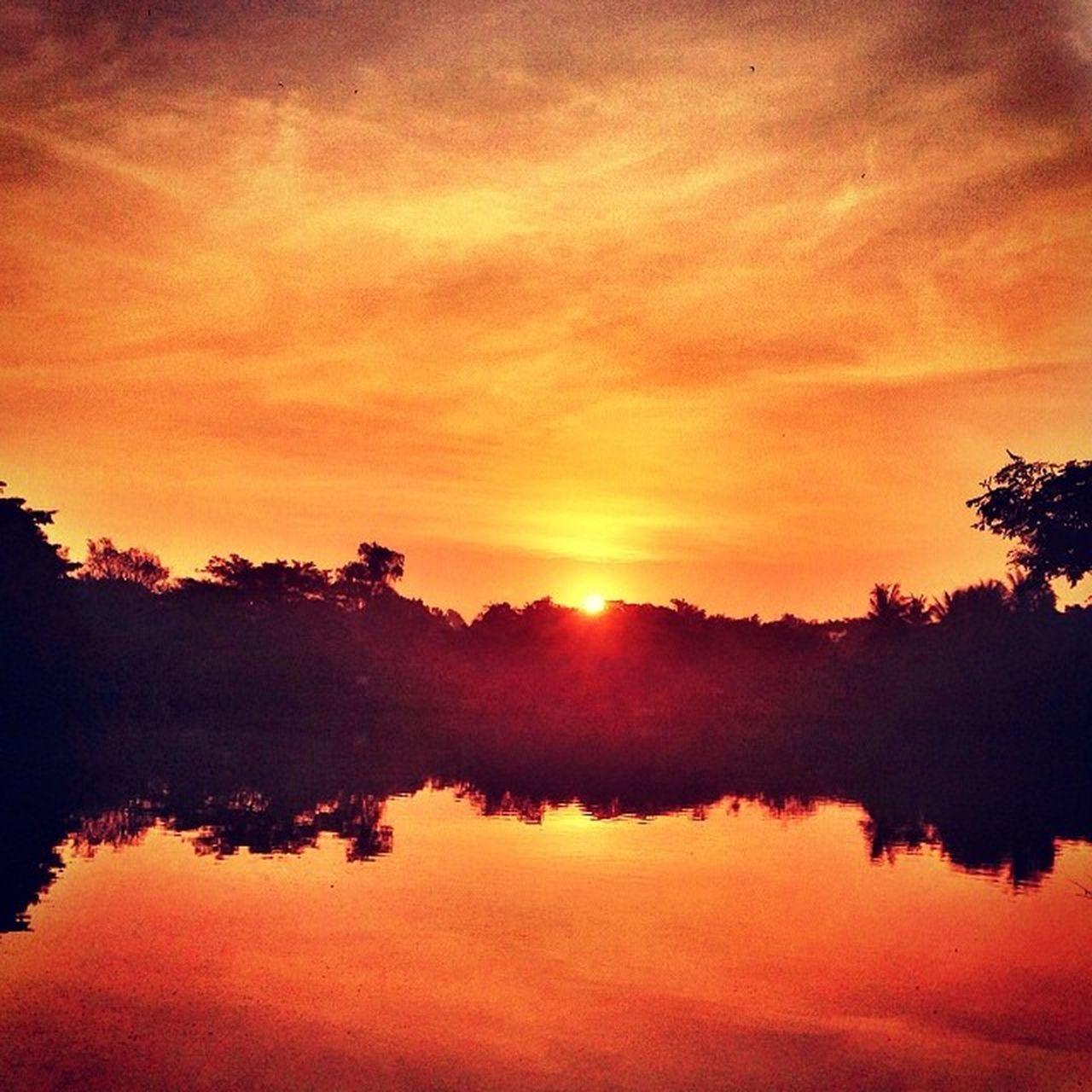 สวัสดีตอนเช้า Morning Sunset Thailand บางน้ำผึ้ง บางกระเจ้า