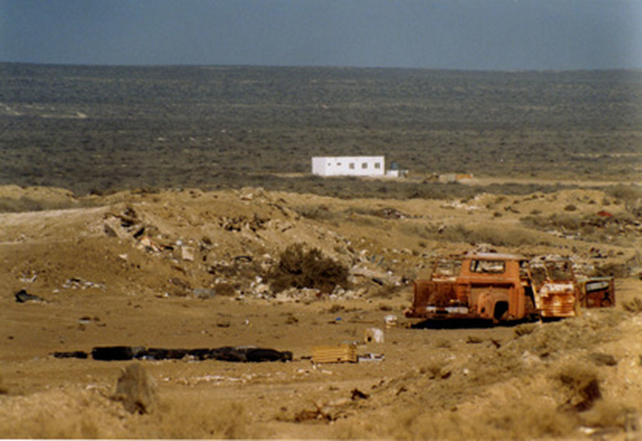 travel love Baja California Camping Desolation Dry Terrain Hardy Plants Mexico Off Road Rough Rough Trade